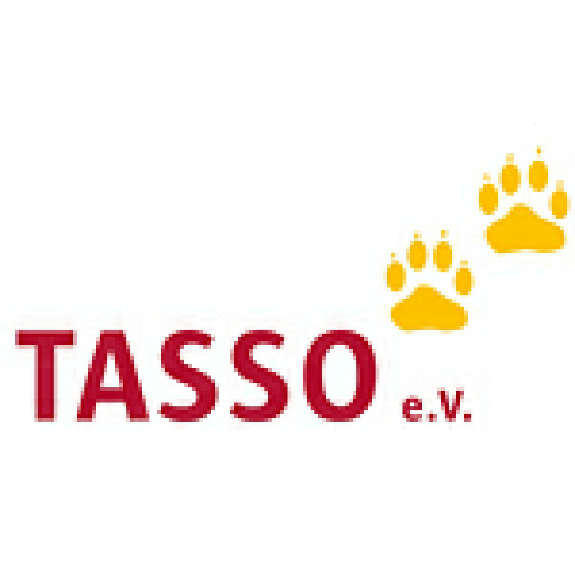 banner-tasso