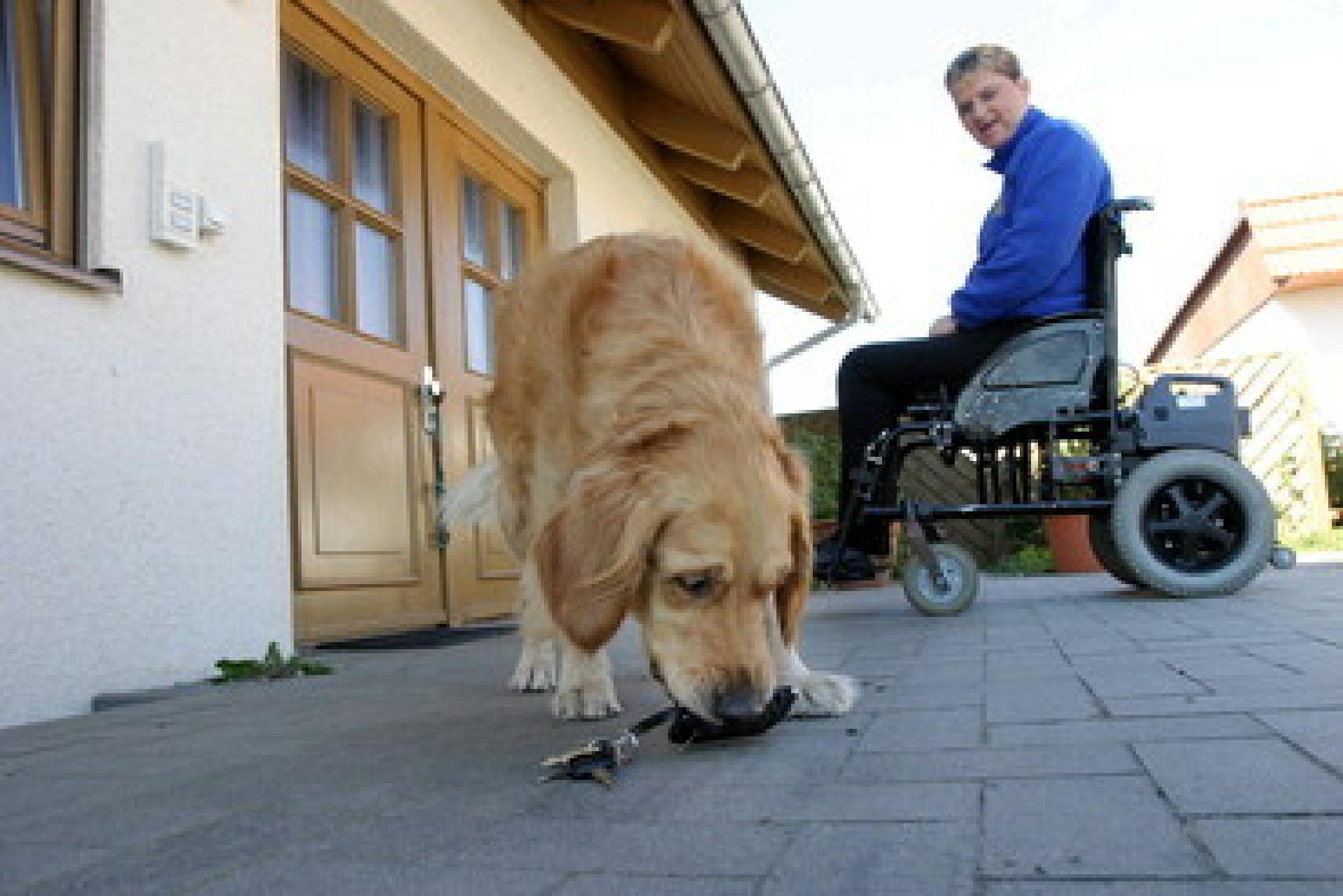 Der Schlüssel zu einem selbstbestimmten Leben: Behinderten-Begleithunde haben wichtige Aufgaben – beispielsweise für ihren Halter den Haustürschlüssel zu apportieren, wenn er herunterfällt. Foto: Mars