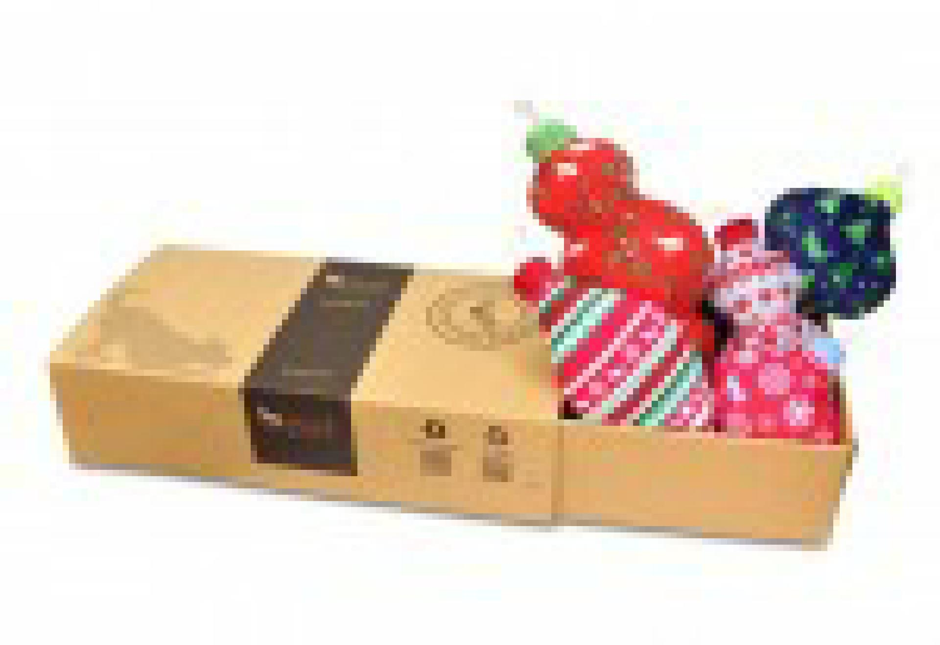 holiday-toys_b2c_01