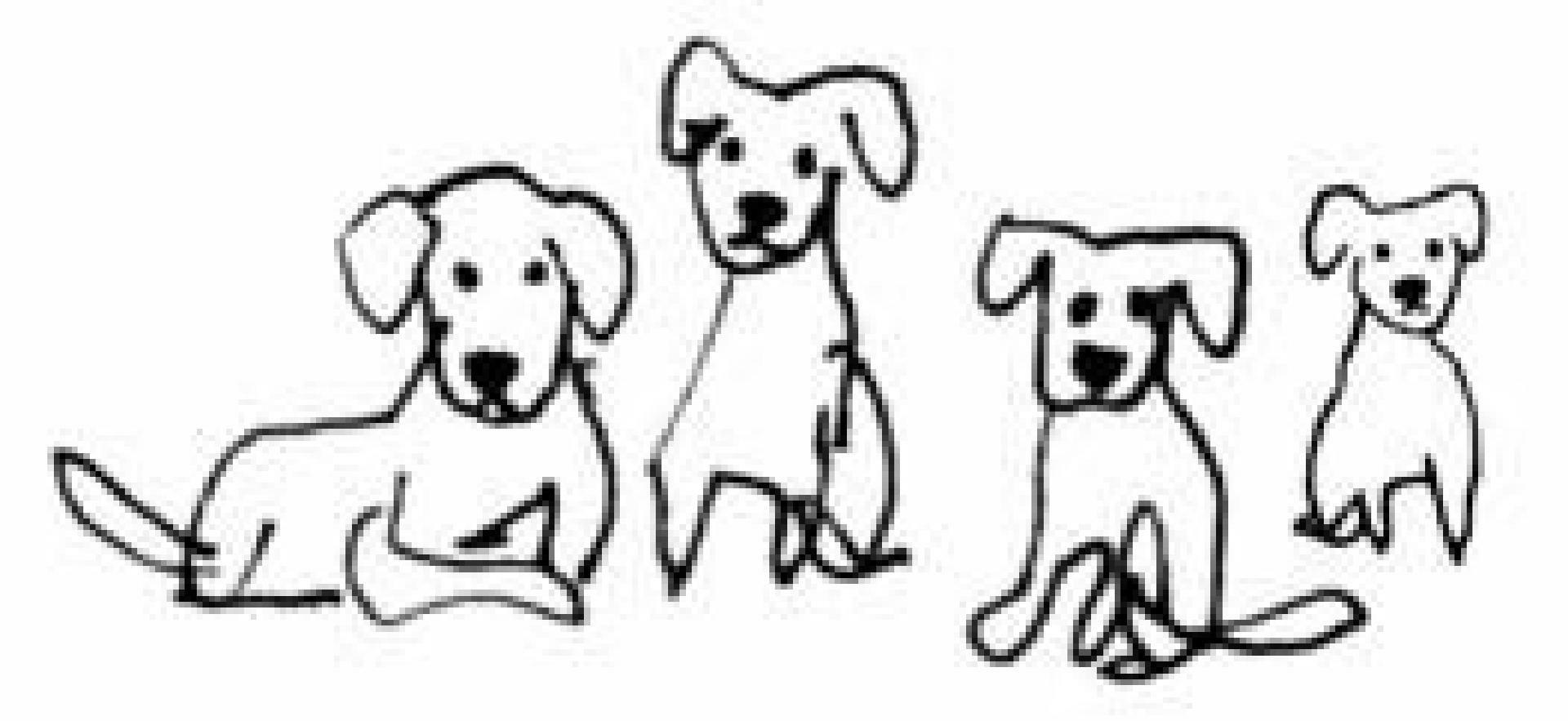 Gardien Beim Hund Wenn Der Durchfall Nicht Aufhört