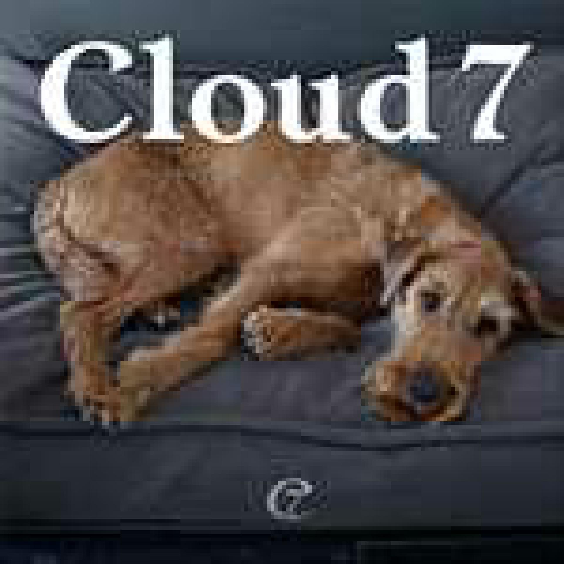 banner-cloud7