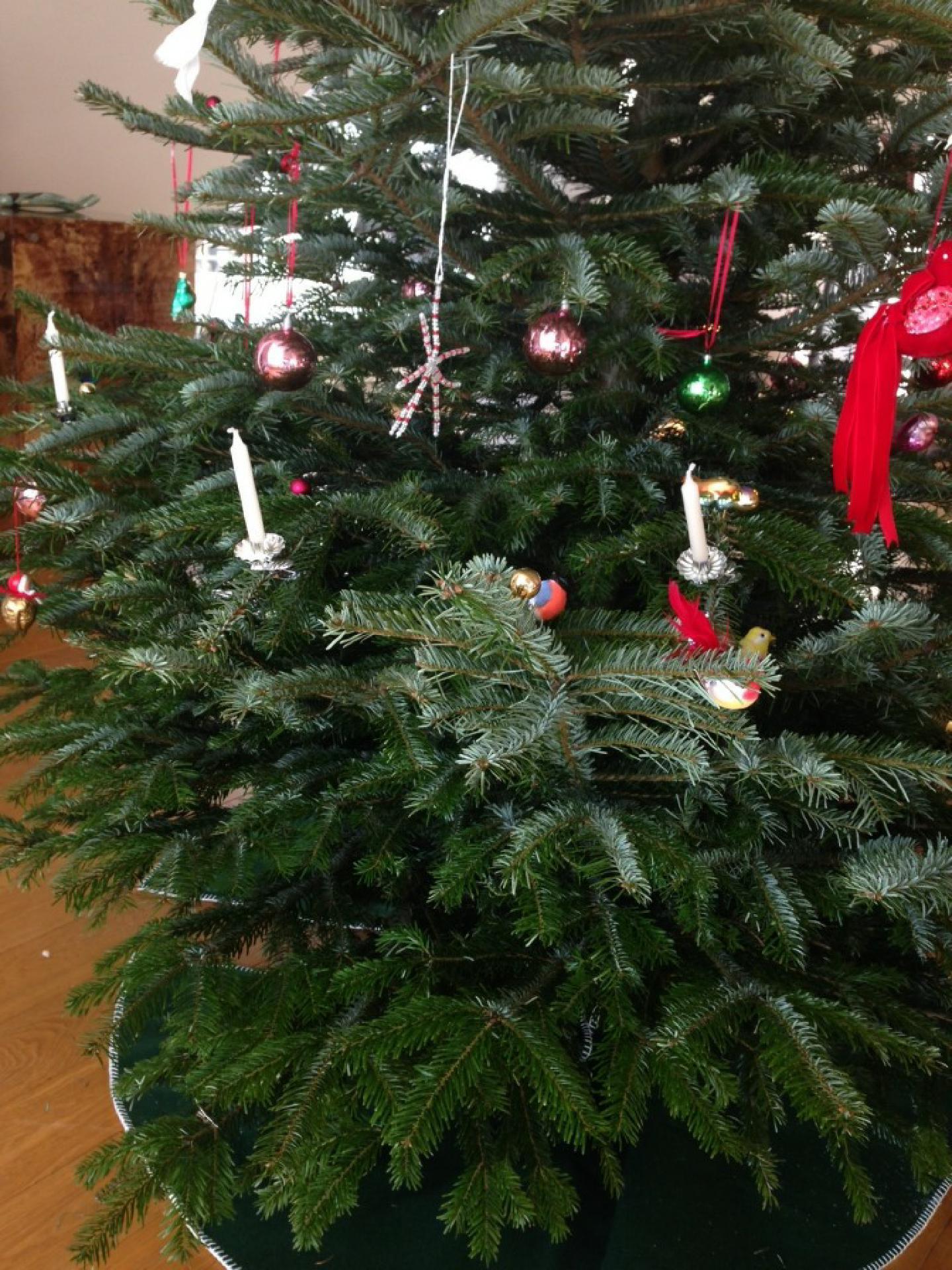 Weihnachtsbaum in der Ära Pixel-Pubertät