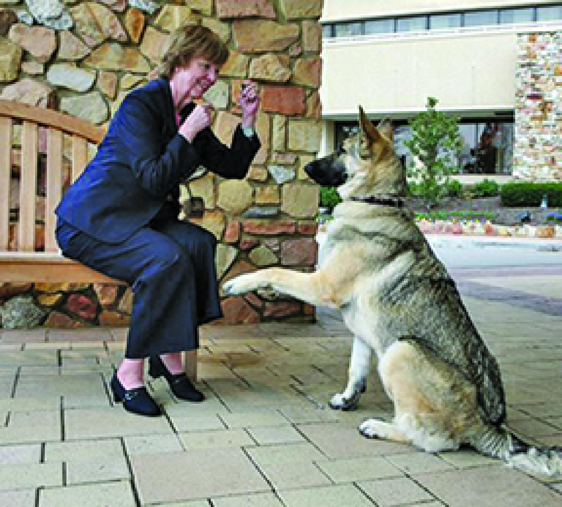 Karen Pryor übt mit einem neuen Bekannten