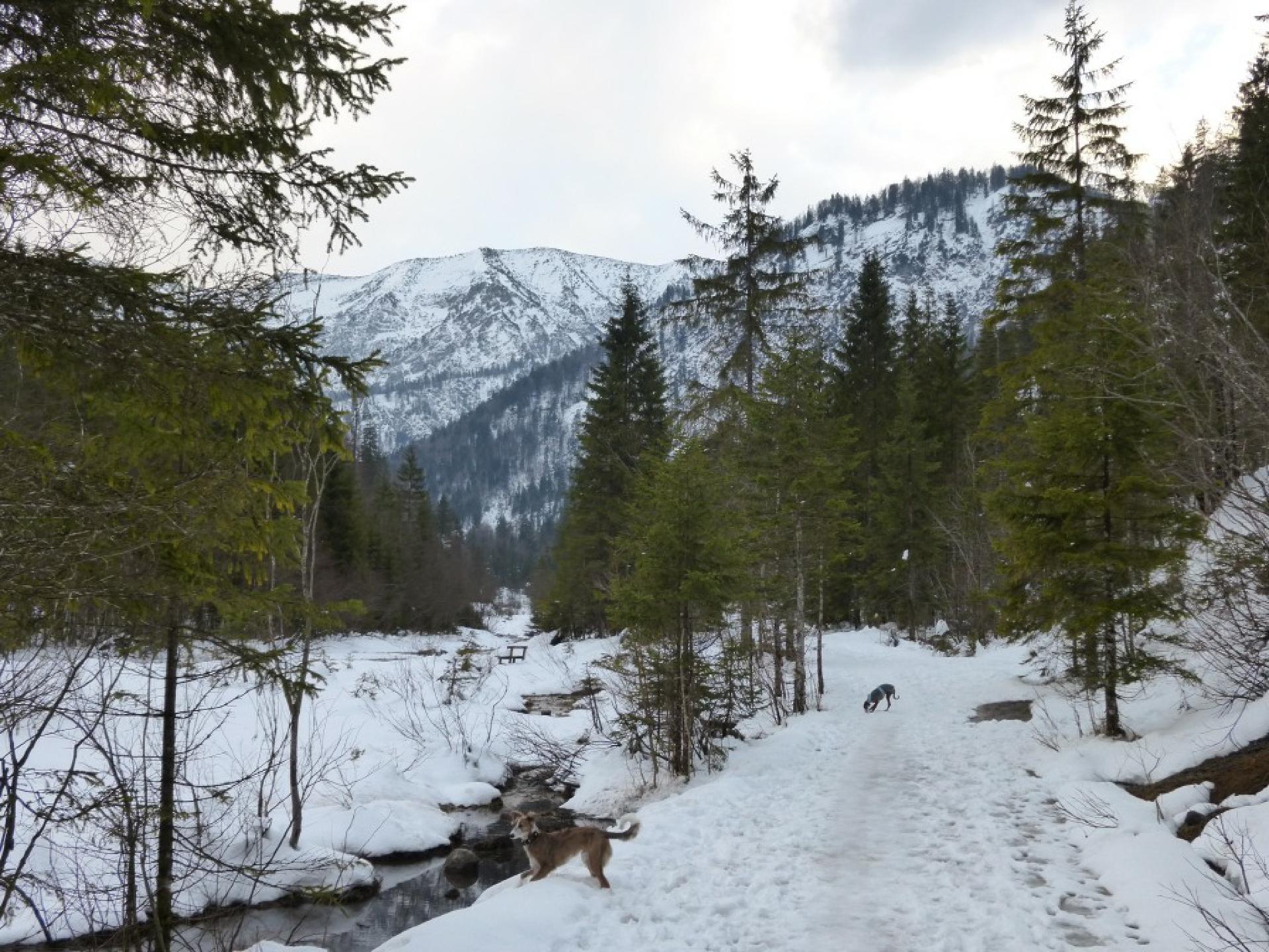 Kreuth, Weg zur Blauberg-Alm