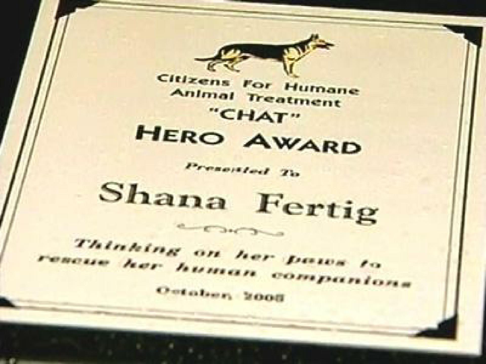 Shanas Heldenurkunde