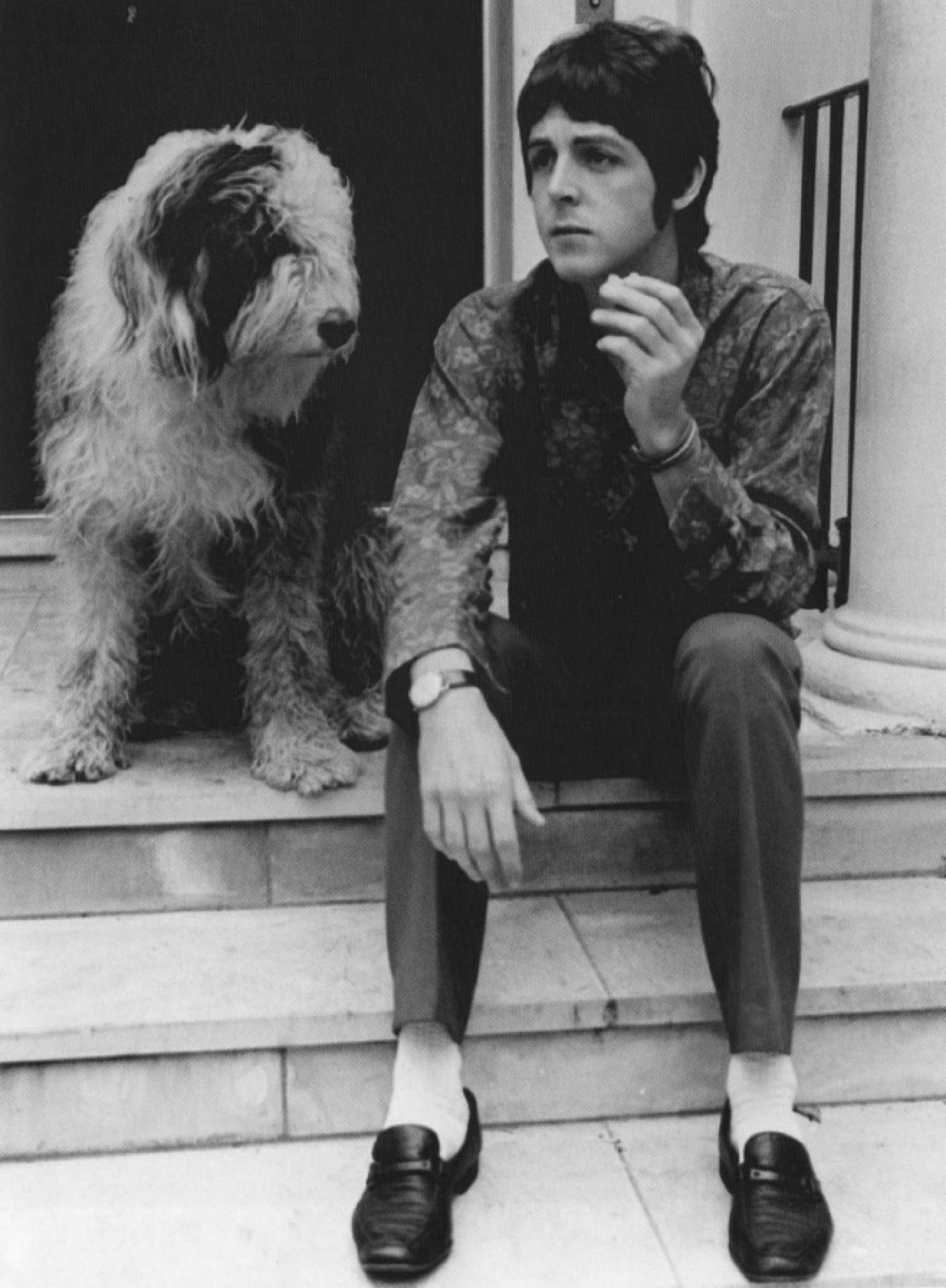 """Paul McCartney mit Martha, seinem Bobtail, für den er den Song """"Martha, My Dear"""" komponierte"""