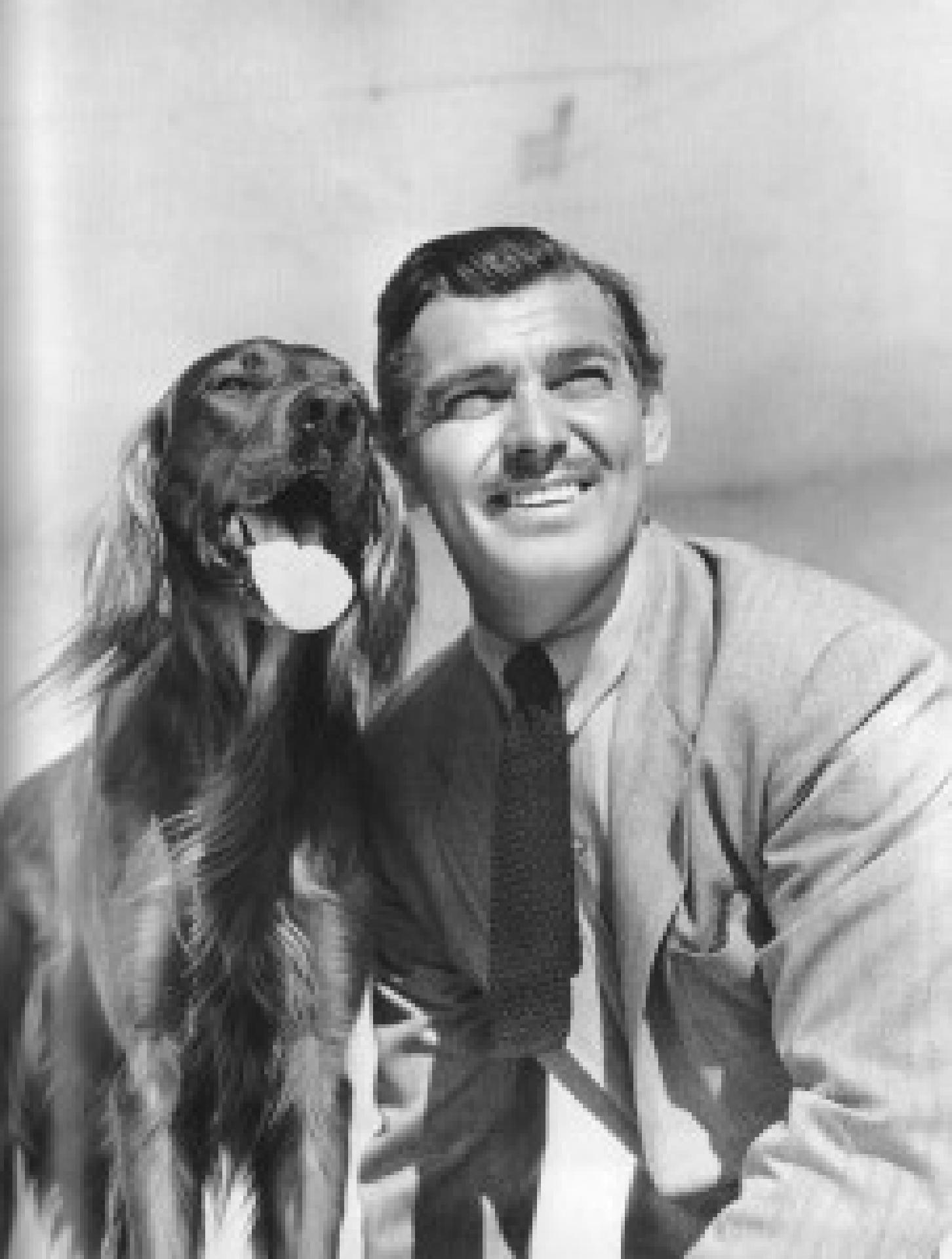 Clark Gable ud sein Setter Lord Reilly, ca. 1941