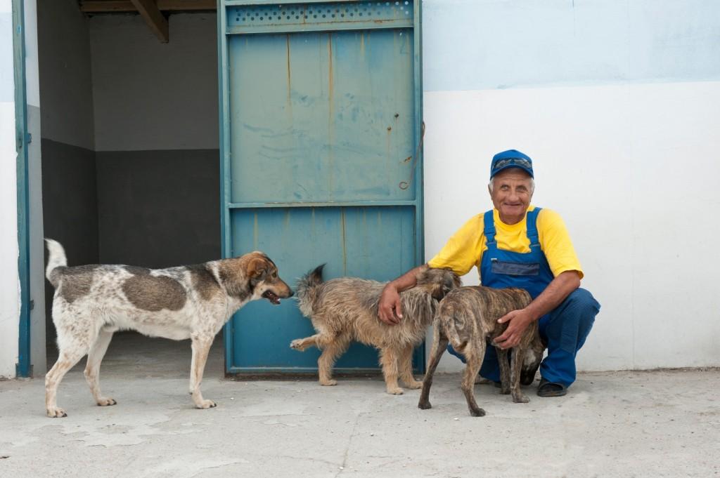 Viele Einheimische unterstützen durch ihre Arbeit das Tierschutz- und Kastrationszentrum in Odessa