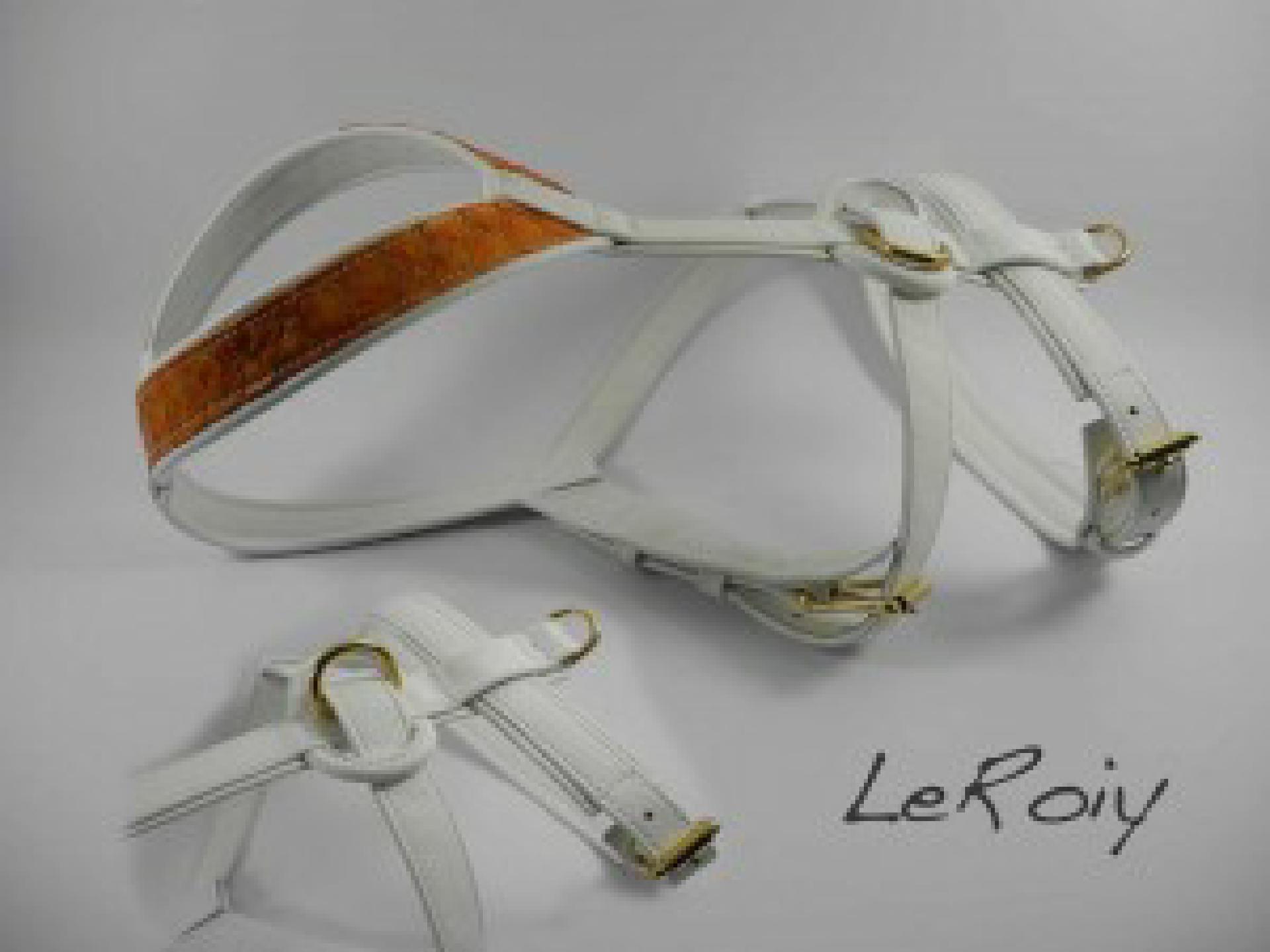 Geschirr aus weißem Leder und orangener Papageifischhaut