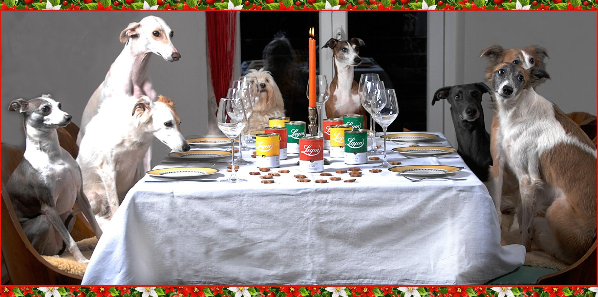 weihnachtskarte lang (1)