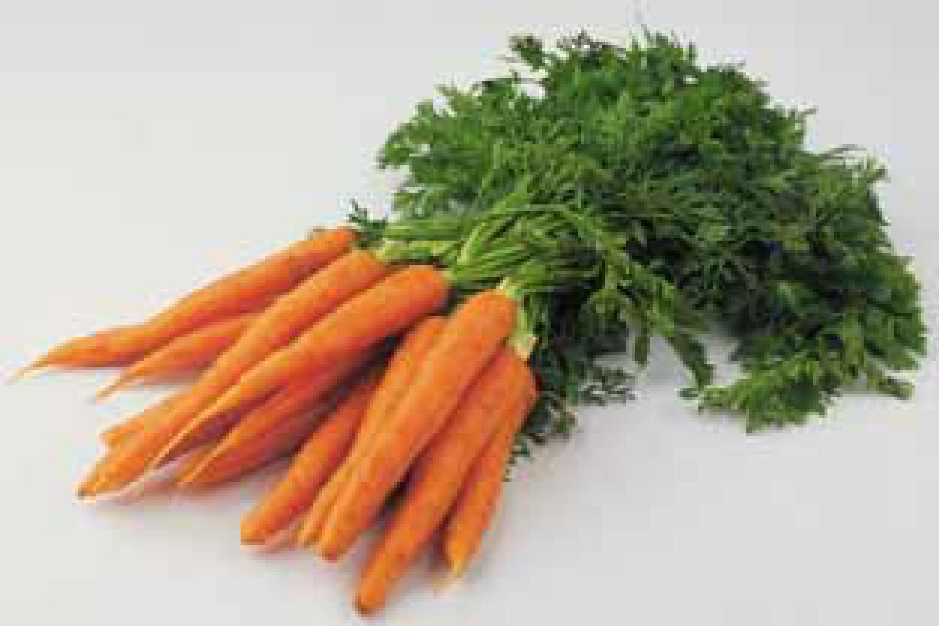 Karotten2