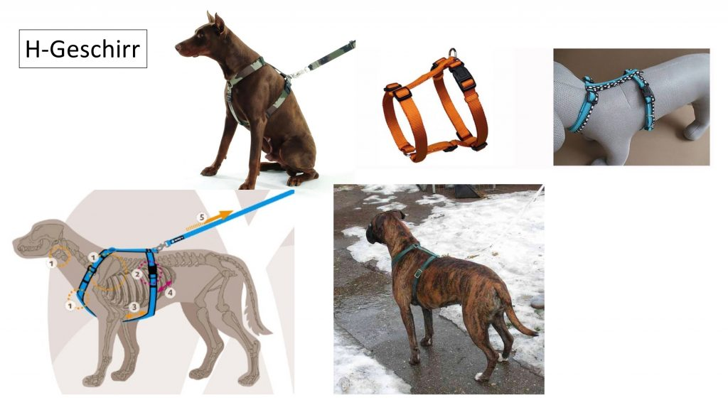 Owalo Design  Erziehungsgeschirr Fur Hunde